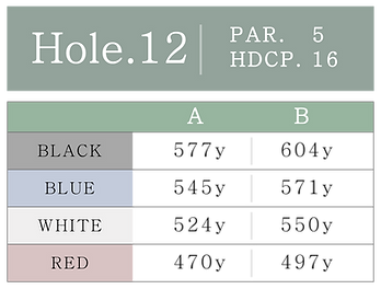 HOLE_12.png