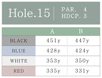 HOLE_15.png