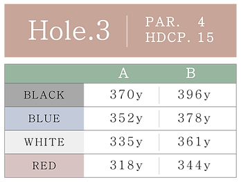 HOLE_03.png