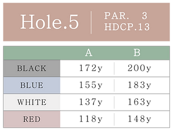 HOLE_05.png
