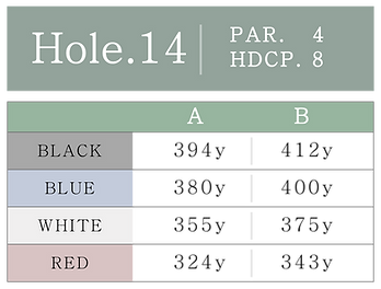 HOLE_14.png