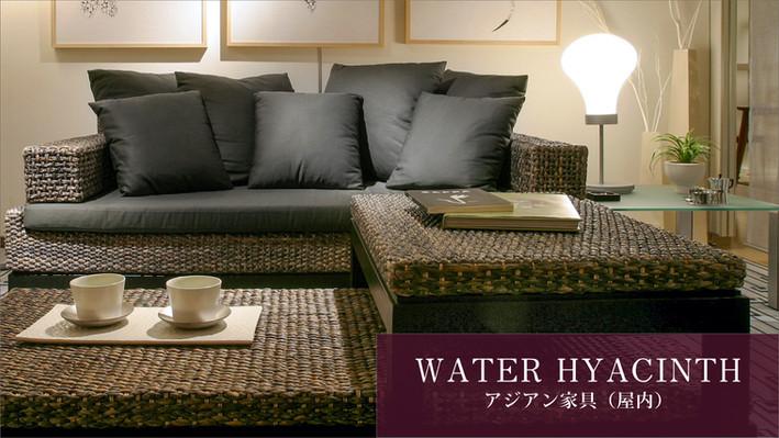 YOTHAKA_TOP_1.jpg