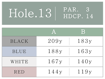 HOLE_13.png