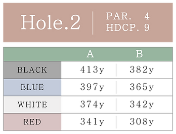 HOLE_02.png