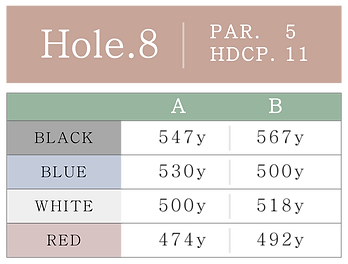 HOLE_08.png