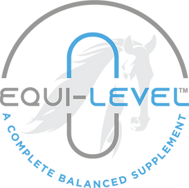 Equi-Level_logo_NEW.png