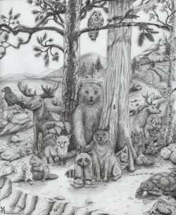 Woodland friends graphite