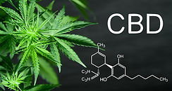 CBD Chemical Compound.jpeg