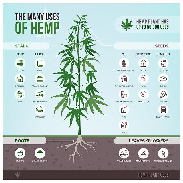 Hemp Benefits Chart.jpg