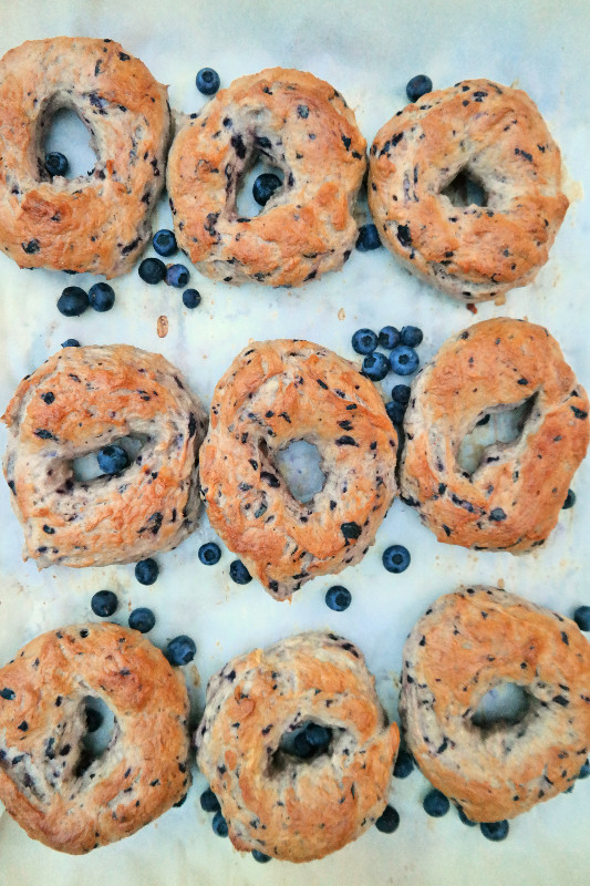 Blue Bird Bagels | eatlovegarlic @eatlovegarlic