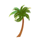 PALM1_edited.png