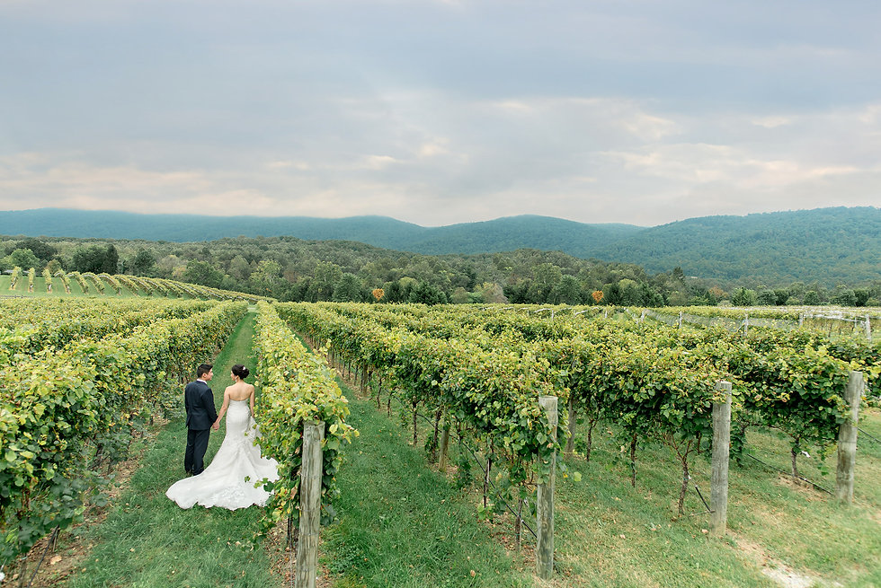 Virginia Wedding Planner Charlottesville Mary Elizabeth Events Veritas Winery