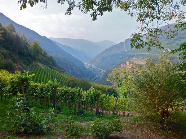 Romantik Hotel Turm. Alto Adige/Sudtriol Wine Region