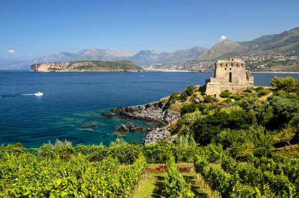 A Guide To Southern Italy's Wine Regions