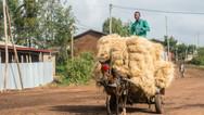 Photos Ethiopie juin 2018-08982.jpg