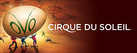 12.28.16-cirque-v1-1280x500-d38f95c0f9.j