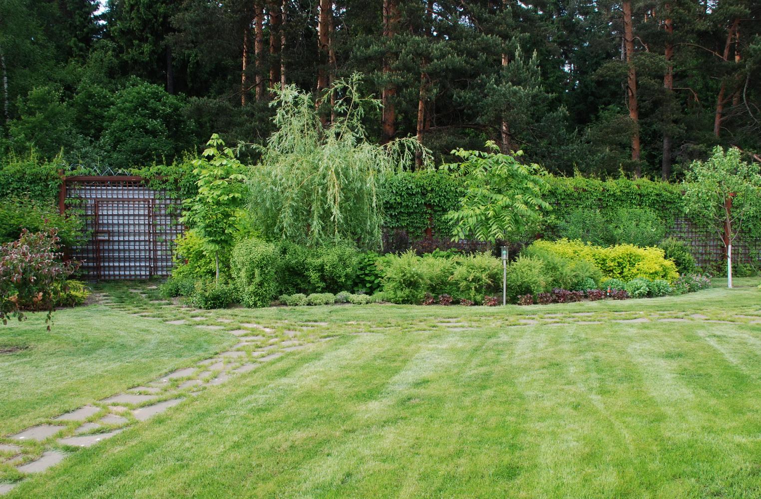 Групповые посадки, Озеленение, Ландшафтный дизайн
