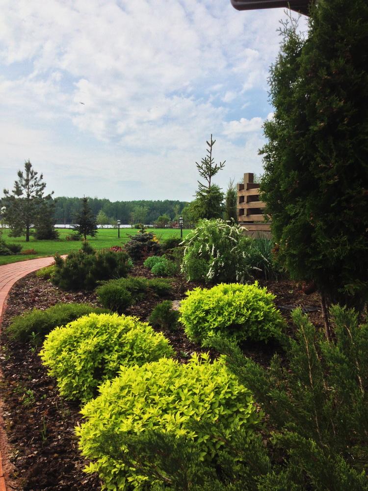 Озеленение, Группы растений, дизайн сада