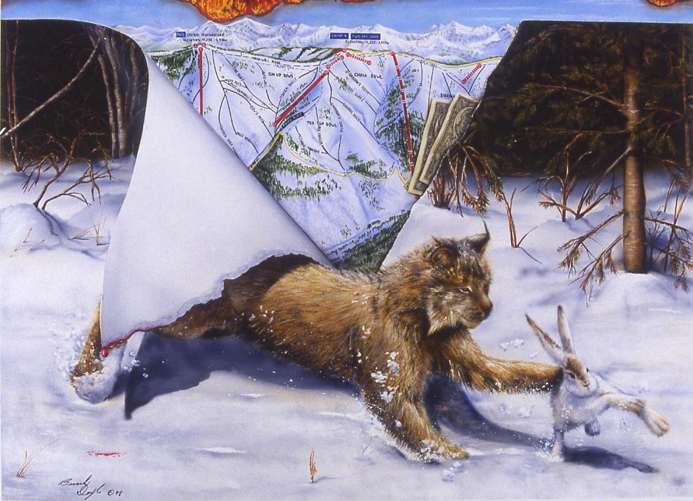 Vail Lynx