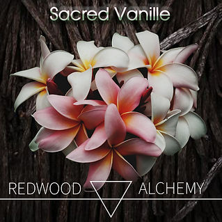 Sacred Vanille Promo 1.jpg
