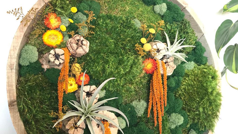 Round orange amaranthus frame