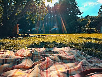 Black community potluck picnic
