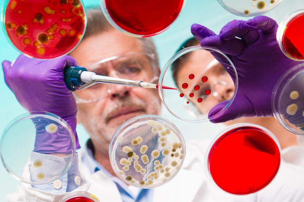 A scientist pipetting a solution—a life sciences conceptual image.