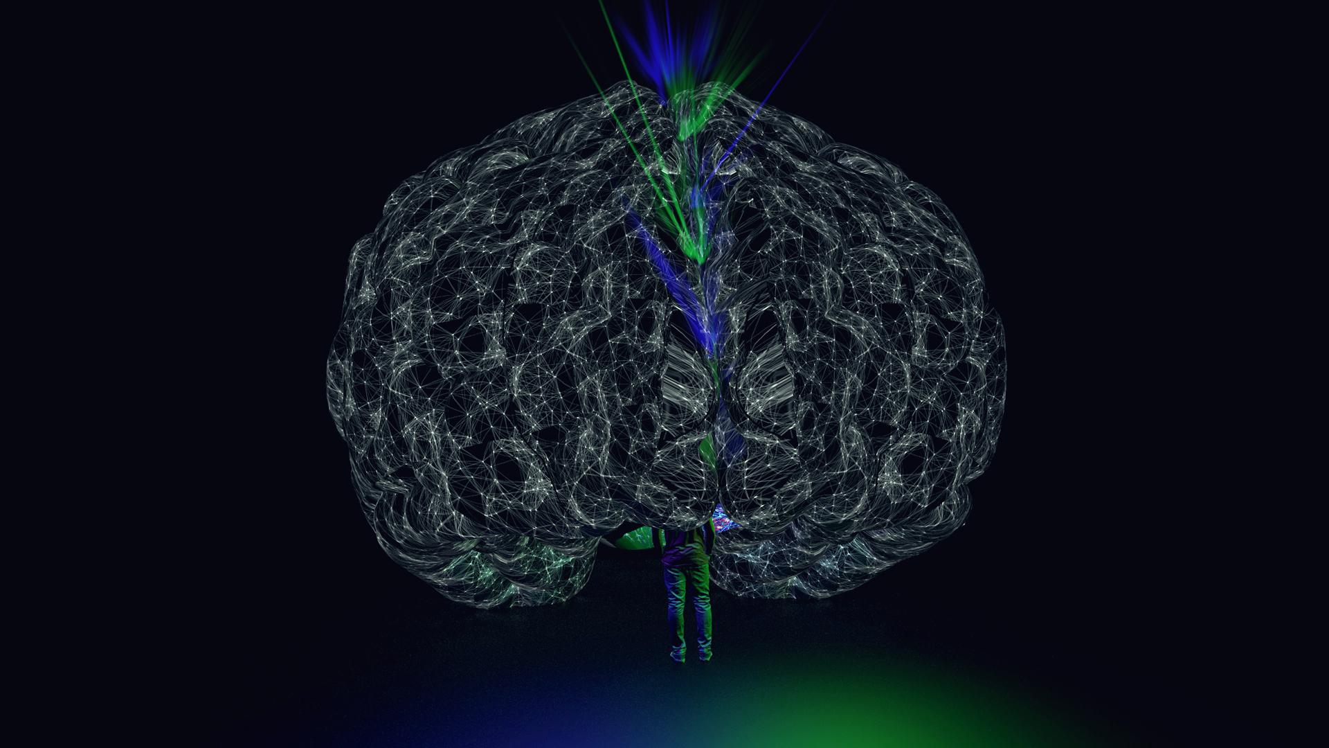 171129_pod tests_brain_001.jpg
