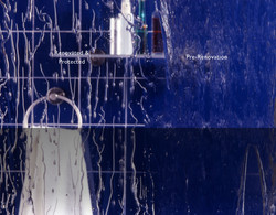 ClearShield-Shower