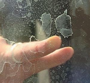 Dirty shower glass.jpg