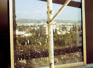Window damaged during construction