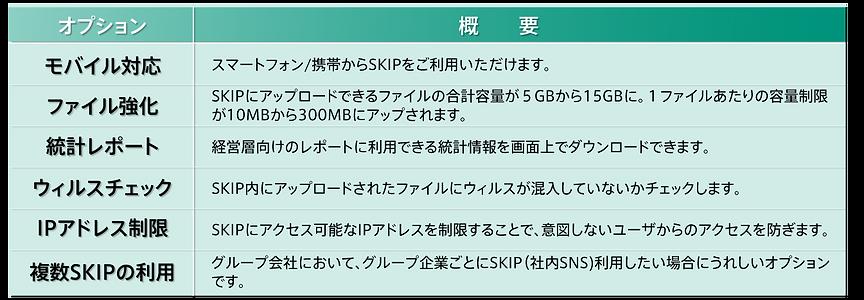 SKIPオプション表