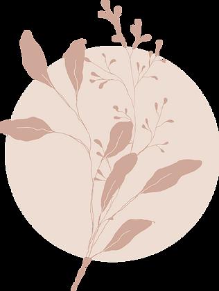 ob-illustration-1.png