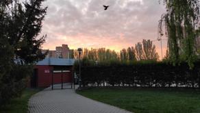 La Rubia sunrise