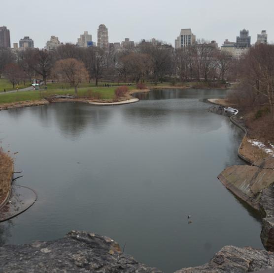 Central Parque - NY - 03.2017