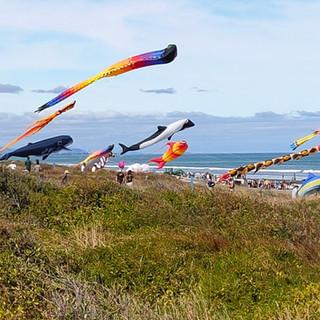 6th Kites.jpg