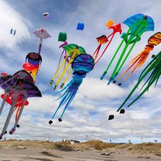 6th Kites 2.jpg