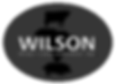 wilson process_edited.png