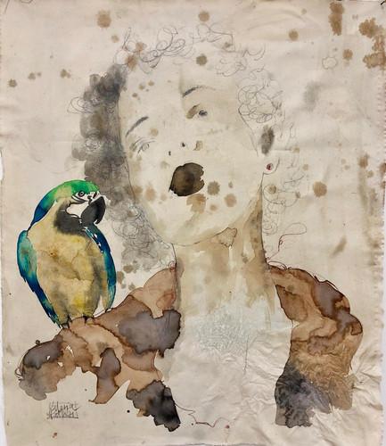 VALE-il consiglio del pappagallo-80x95.j