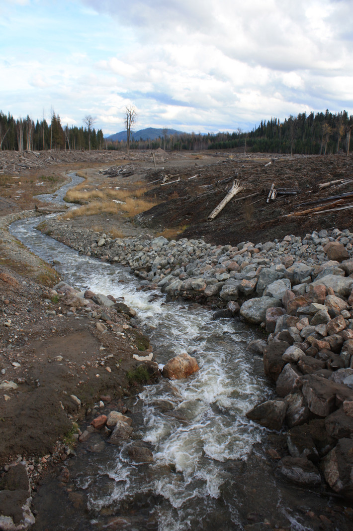 Mining Watch Legal Battle