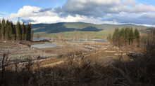 BC Penalizes Mt Polley Mine