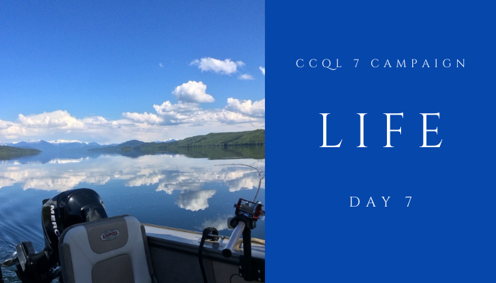 CCQL 7 Campaign DAY 7: LIFE