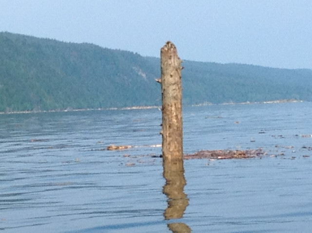 Copper Limits Averaged for Quesnel Lake