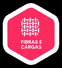 HPP Brasil Logo - V5 FINAL-30.png