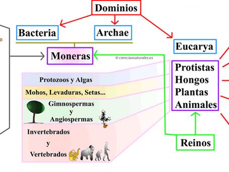 02/08/2021 CLASE BIOLOGIA  SEMANA 24 CARACTERES TAXONÓMICOS