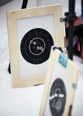 Shooting Boards of Biathlon