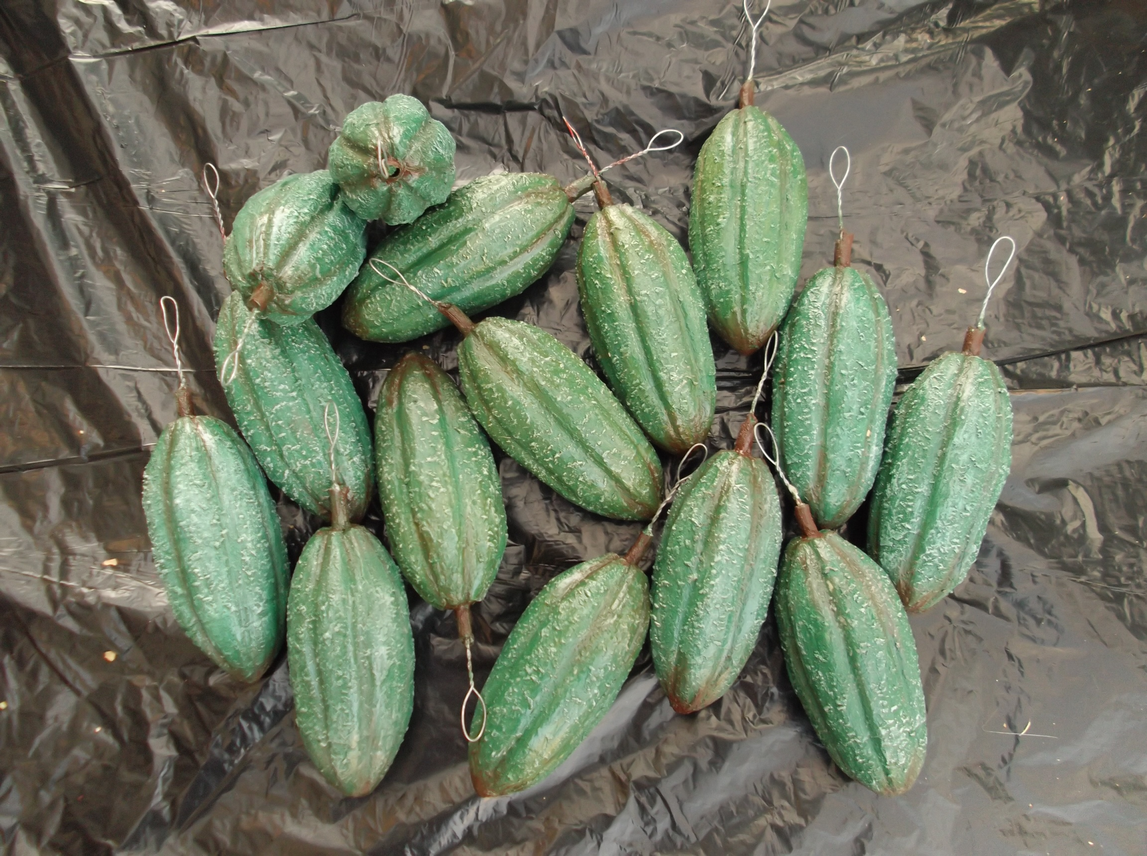 Green coco pods