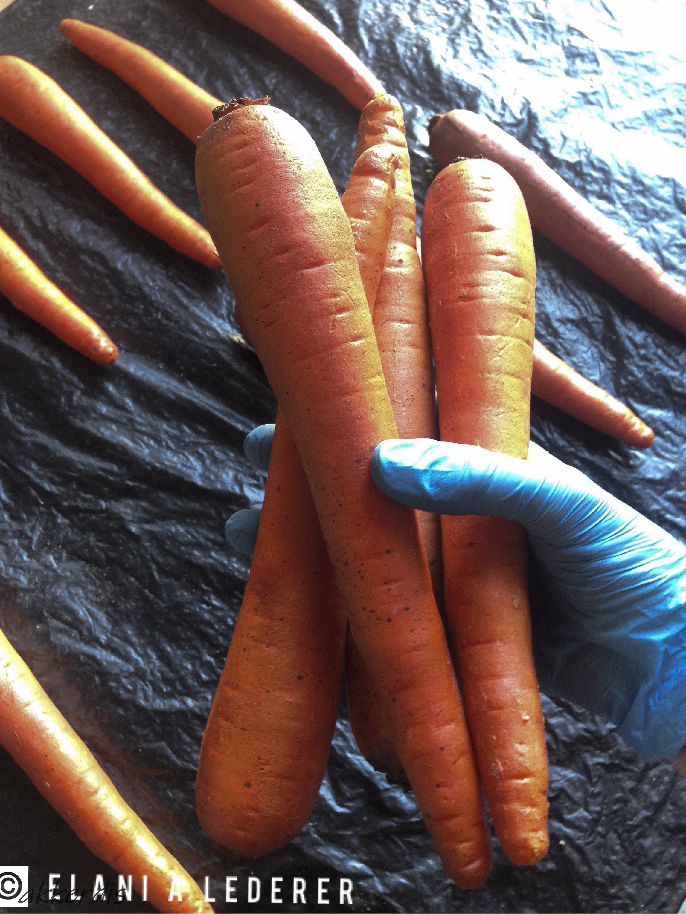 Fabricated carrots