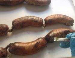 soft sausages fabrication