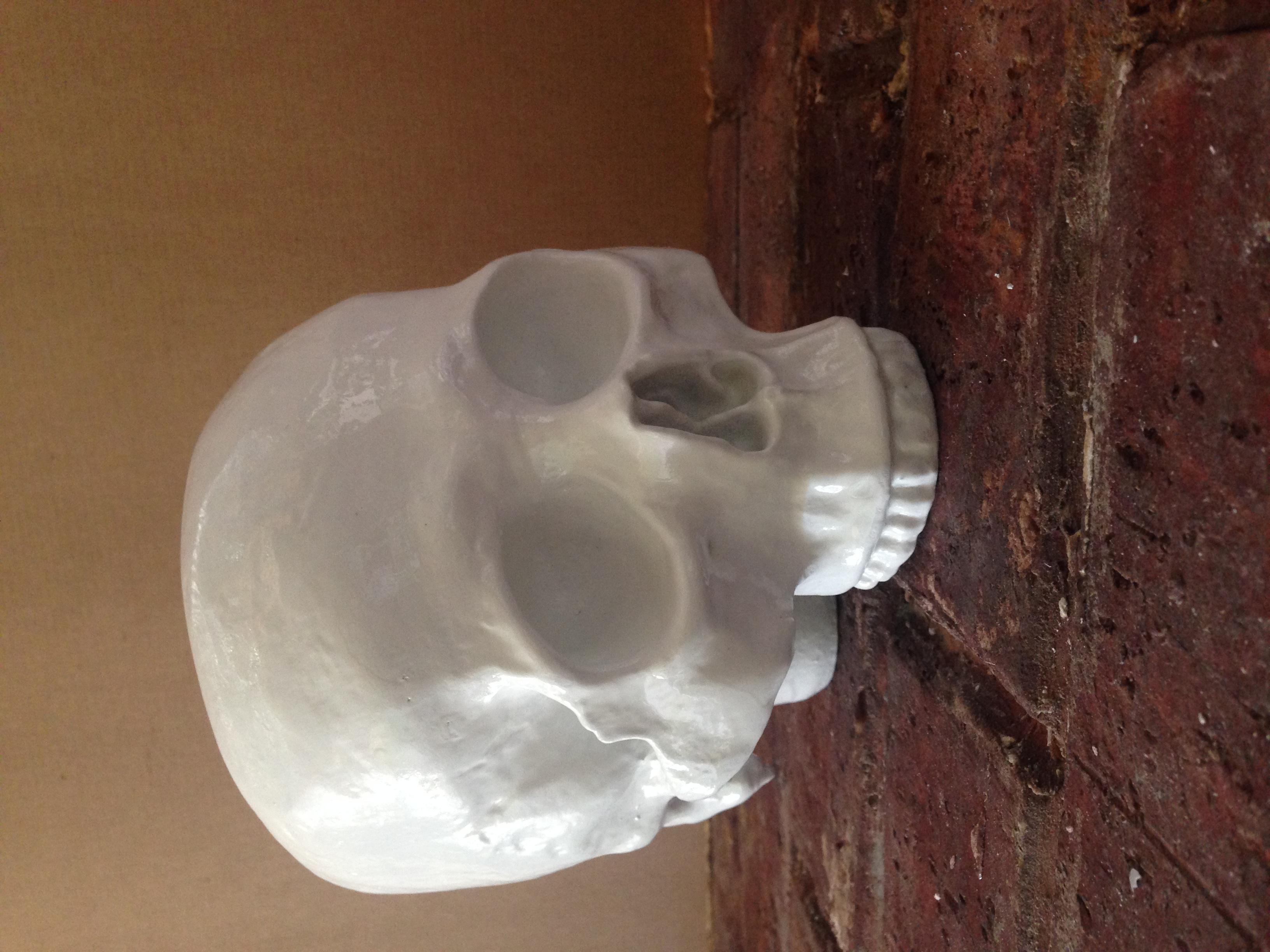 fabricated skull
